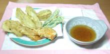 はるかのひとりごと-チコリの天ぷら