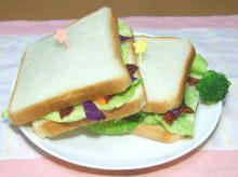 はるかのひとりごと-キャベツのサンドイッチ