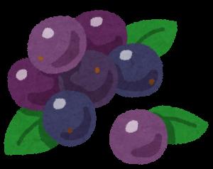 fruit_acai
