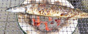 幸腹グラフィティ7話の七輪で焼いている秋刀魚