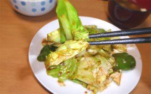 肉なし回鍋肉の箸上げ